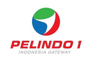 PT Pelindo I