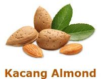 Kandungan Nutrisi dan Manfaat Kacang Almond