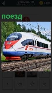 По рельсам мчится современный скорый поезд без остановок и везет внутри пассажиров по своим делам