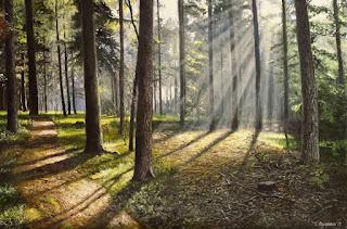 paisajes-sol-bosque