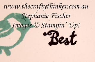 #thecraftythinker #stampitinkitbloghop #cardmakingtechniques #cardmaking ,Ink It Stamp It Blog Hop, Selective Stamping, Stampin' Up Australia Demonstrator, Stephanie Fischer, Sydney NSW