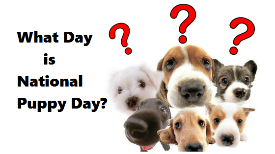 What Day is National Puppy Day?