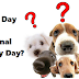 National Puppy Day – March 23 | A Day for Animal Lovers
