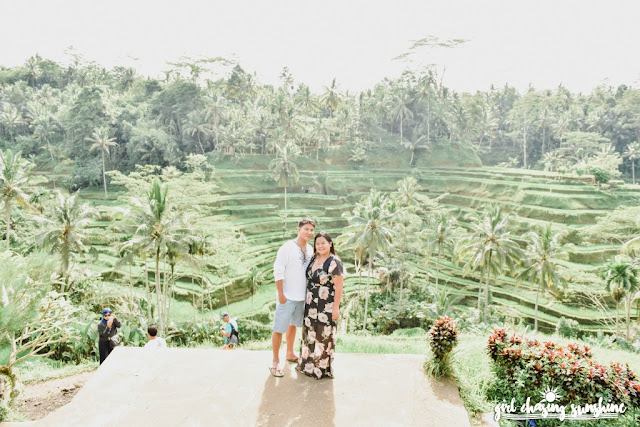 Best of Bali Tegallalang Rice Terraces