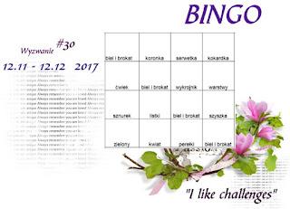 https://like-chellenges.blogspot.com/2017/11/wyzwanie-30-bingo.html