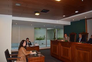 Presidenta del Colegio de Periodistas expuso ante el Tribunal Constitucional por Reforma Laboral