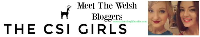 meet the Welsh Bloggers - The CSI Girls - beauty and lifestyle blogger friends based in Cardiff, South Wales