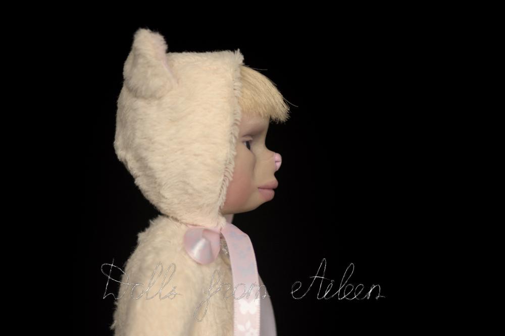 ooak artist teddy cat doll's profile, closeup