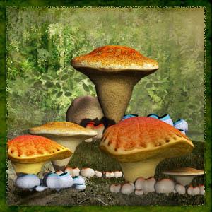 https://4.bp.blogspot.com/-DcguXCcokoA/VzjHACYaYUI/AAAAAAAADdM/A-in4RzygmEFcw6aDCoB_i80u_ekbvL6gCLcB/s1600/Mgtcs__mushroomsGroups.jpg