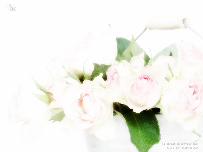 Różowe love