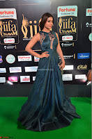 Shriya Saran in Beautiful Transparent Dark Gown IIFA Utsavam Awards 2017 059.JPG