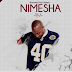 Download Mp3 | Bushoke - Nimeshafika