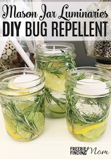 Needles-n-Pins Stitcheries: DIY Natural Bug Repellent