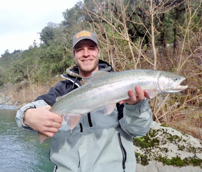 winter-steelhead-Umpqua-river-Oregon