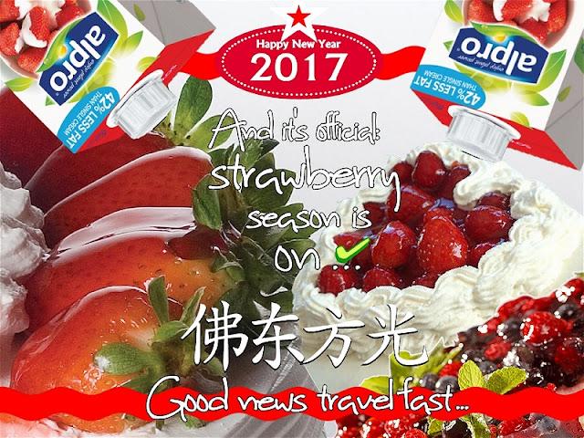 BIOVEGAN PORTUGAL ® A TASTE OF JAPAN: VEGAN CHANTILLY AND STRAWBERRIES