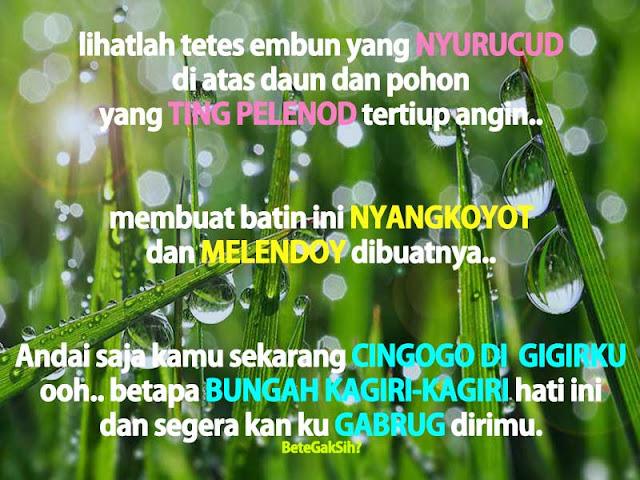 DP BBM Kata-Kata Lucu Bahasa Sunda