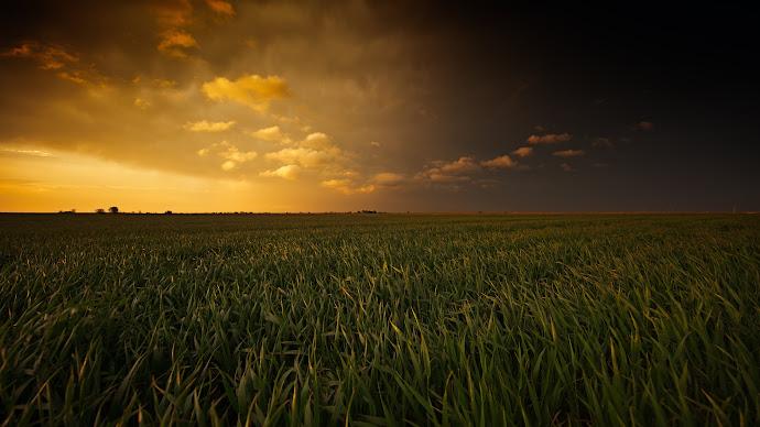 Breathtaking sunset painted plains wallpapers 4k hd desktop backgrounds phone images - Background images 4k hd ...