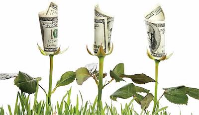 ventajas economia ecologica