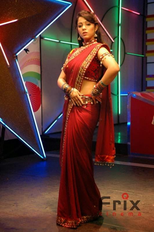 Charmi Kaur Spicy Pics- Check This Out  Frix Cinema-5494
