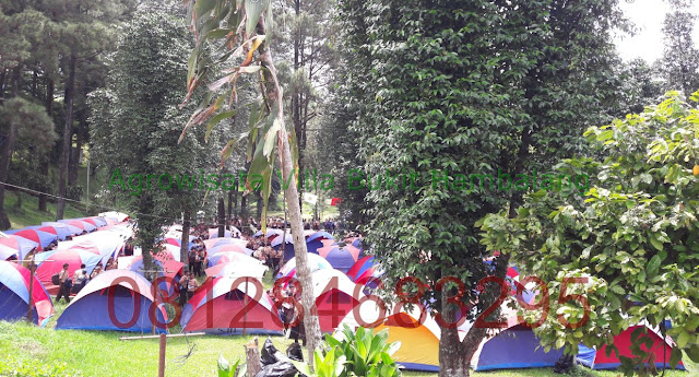 Tempat Camping Sekolah kawasan Sentul Bogor