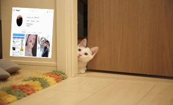 cara mengetahui stalking profil instagram