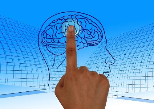 diez-por-ciento-cerebro