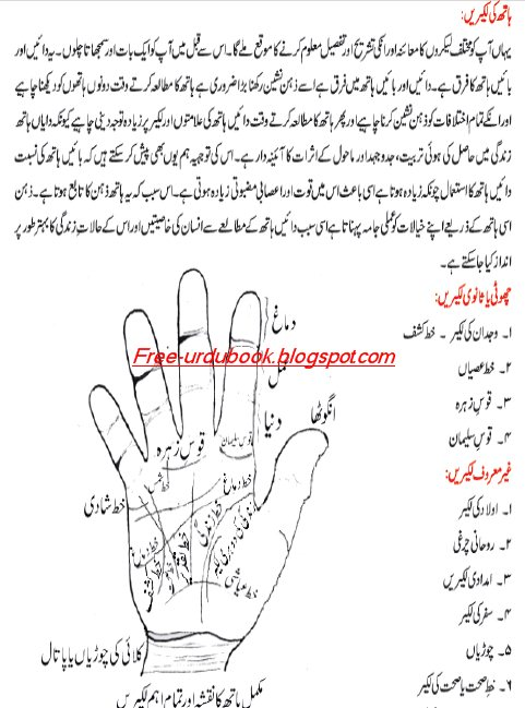 Five Reliable Sources To Learn About Palmistry Details In