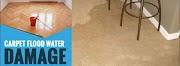 Health Risks Of Carpet Water Damage