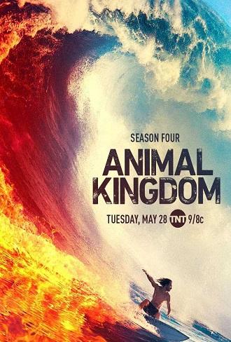 Animal Kingdom Season 4 Complete Download 480p All Episode