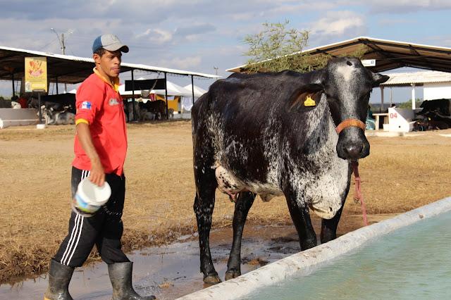 Em Batalha/AL, 36ª Expo Bacia Leiteira levou 30 mil pessoas ao Parque Mair Amaral