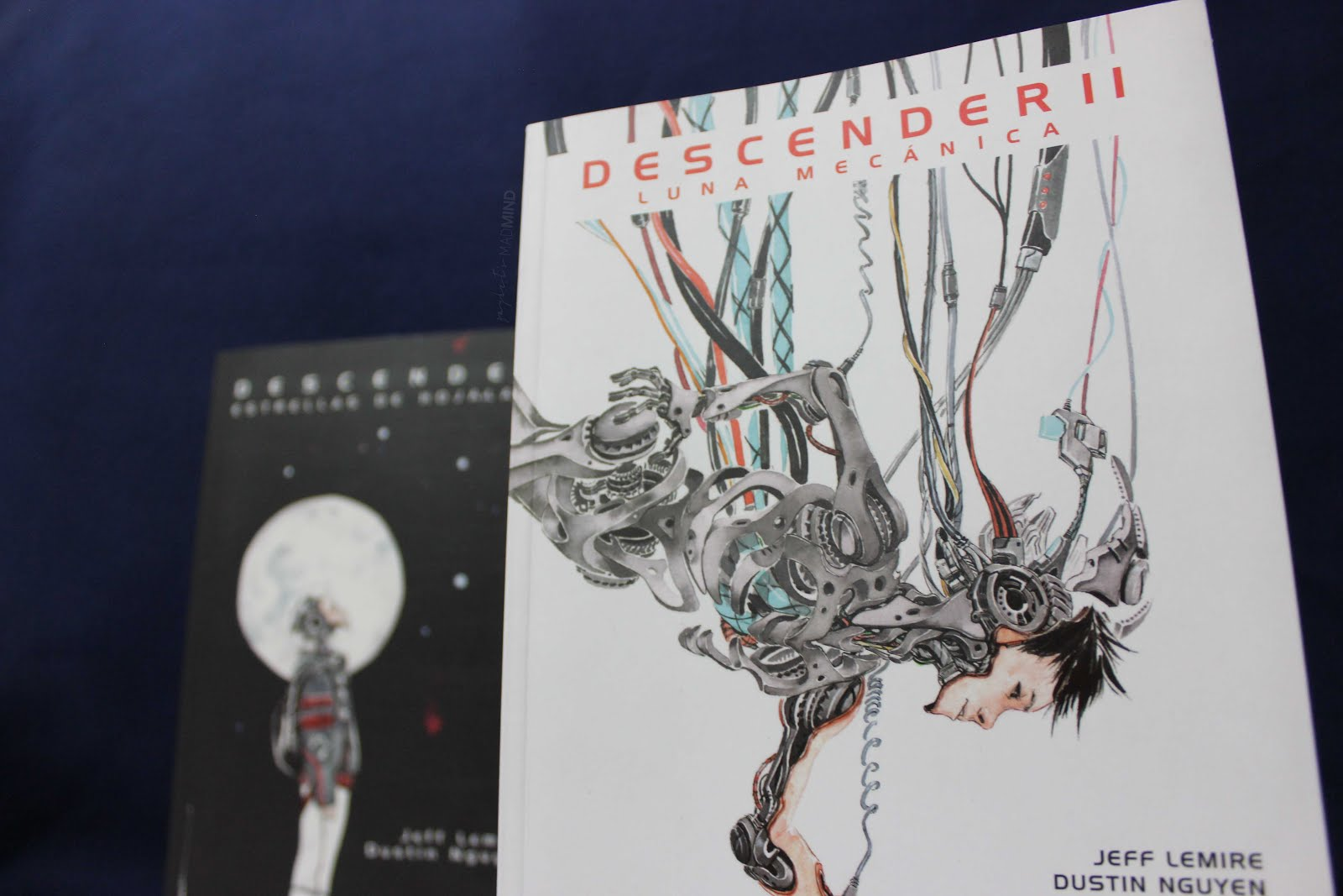 RESEÑA: DESCENDER II