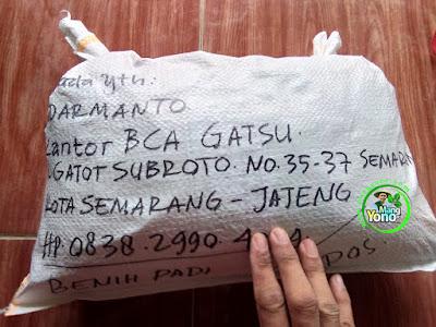 Benih Padi Pesanan SUDARMANTO Kota Semarang, Jateng.   Benih Sesudah di Packing