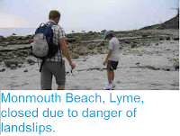 http://sciencythoughts.blogspot.co.uk/2012/08/monmouth-beach-lyme-closed-due-to.html