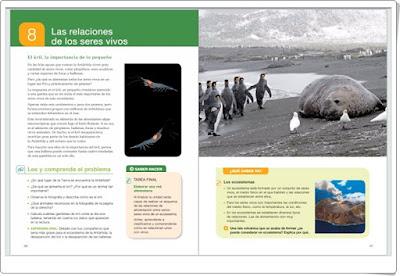 http://es.santillanacloud.com/url/libromediaonline/es/553935_U32_U1