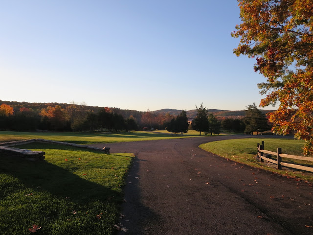 Morning in Upstate New York