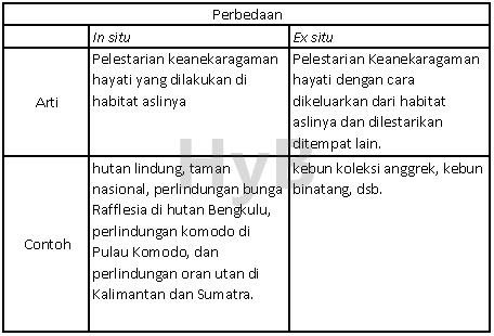 Perbedaan Pelestarian In Situ Dan Ex Situ Test