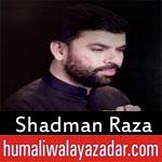 https://www.humaliwalayazadar.com/2018/06/shadman-raza-ramzan-noha-2018.html