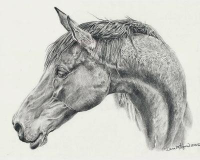 dibujos-de-caballos-pintados-a-lapiz