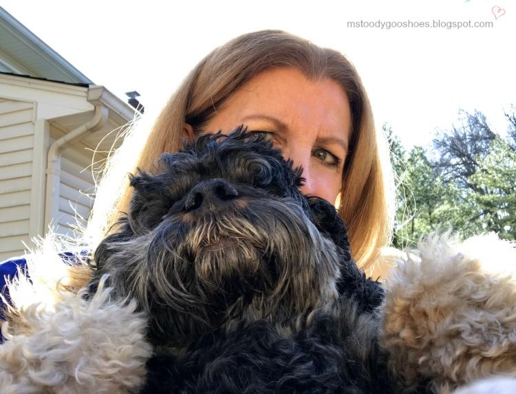 PHOTO DIARY 4.9.17 - 4.22.17 | Ms. Toody Goo Shoes