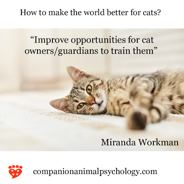 A better world for cats - if people knew how to train them