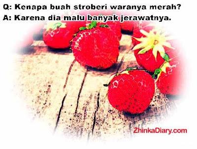 Tebak-tebakan buah stroberi