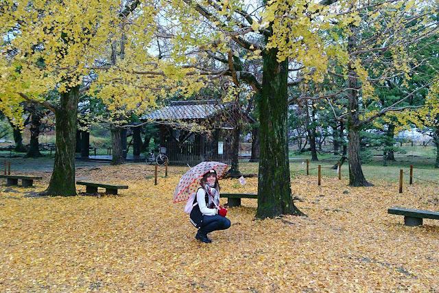 秋の舞鶴公園、福岡