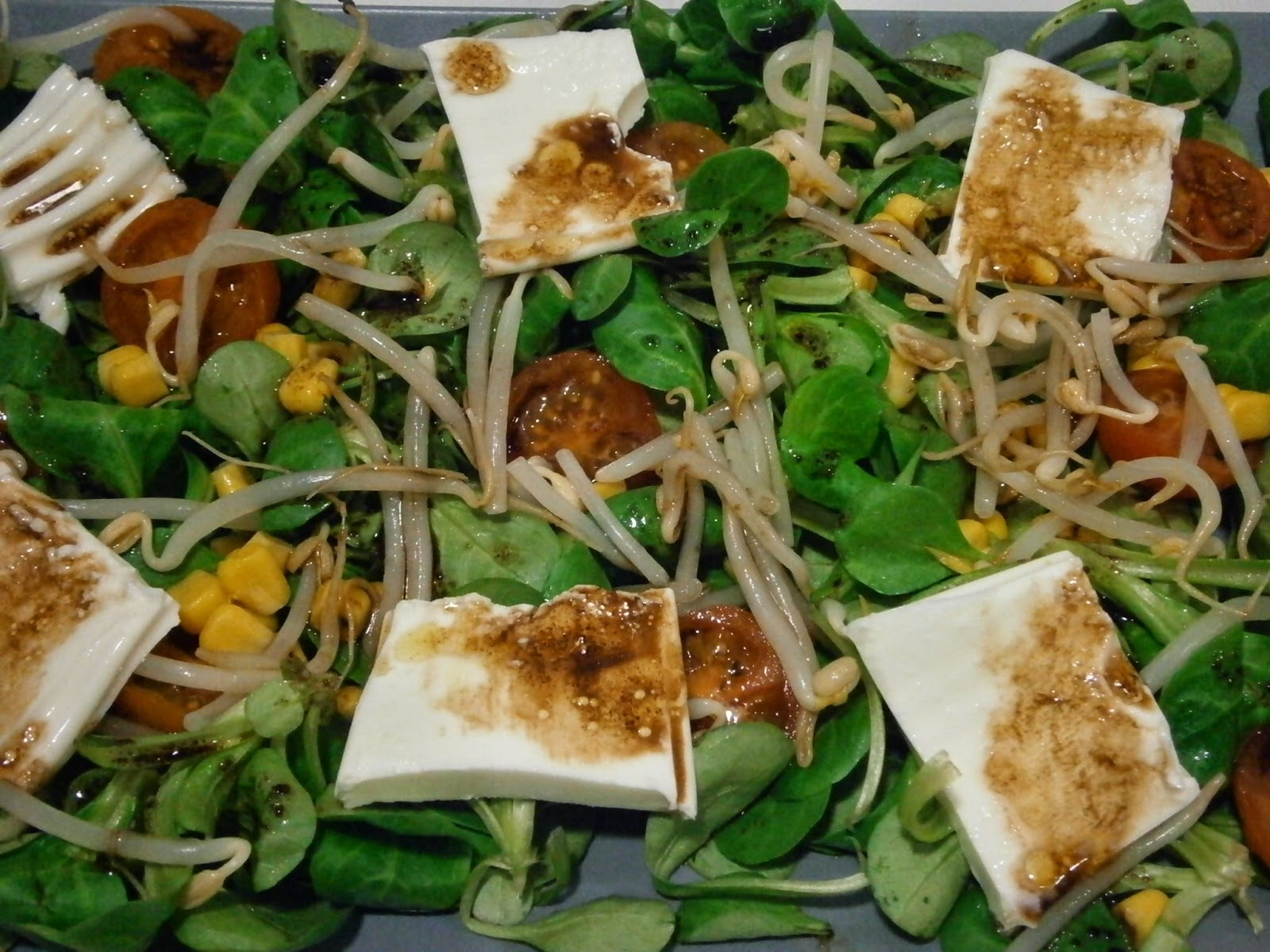 brotes de soja ensalada