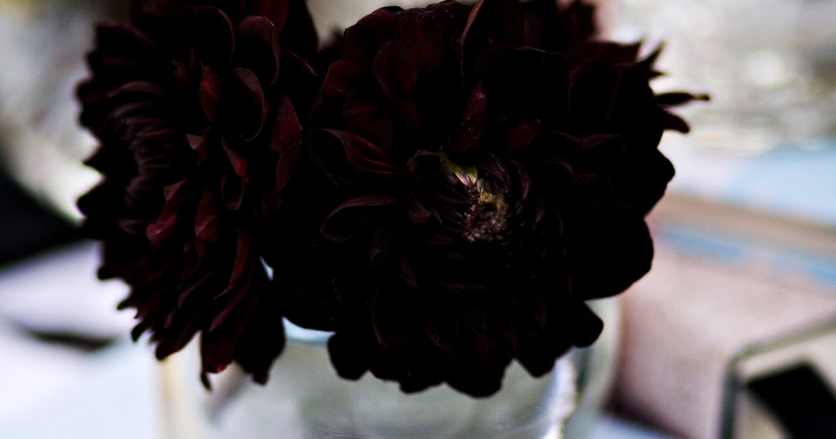 Cute Fruit Wallpapers Beautiful Wallpapers Real Black Flowers Images