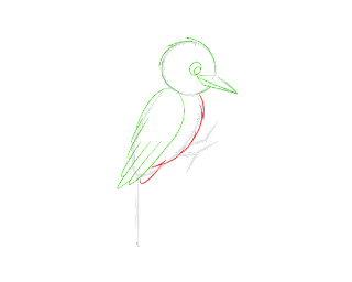 HOW-TO-DRAW-A-WOODPECKER
