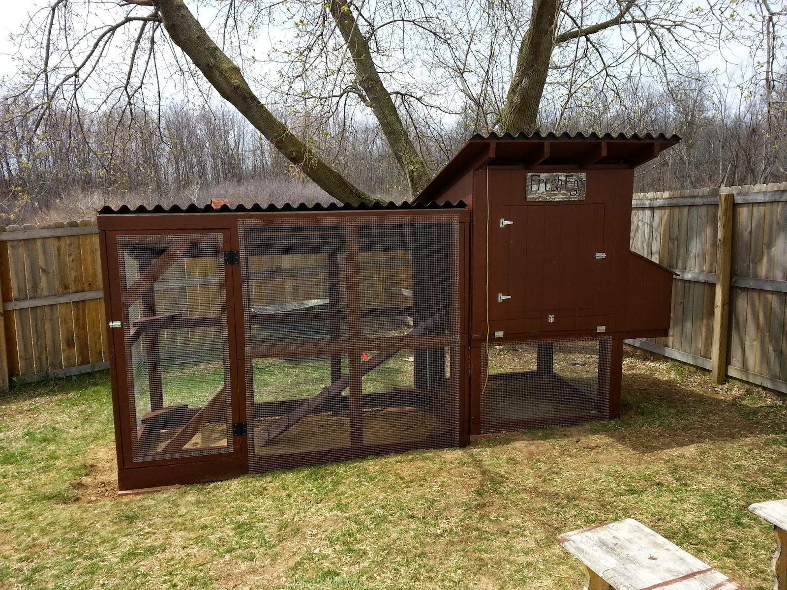 How to build the easy to clean backyard chicken coop for Chicken coop size for 6 chickens