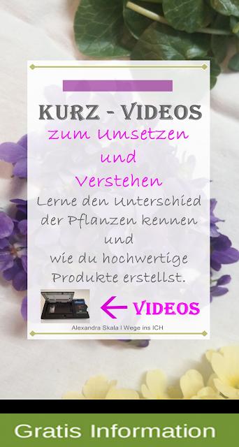 https://wegeinsich.blogspot.com/search/label/Kurz%20Video