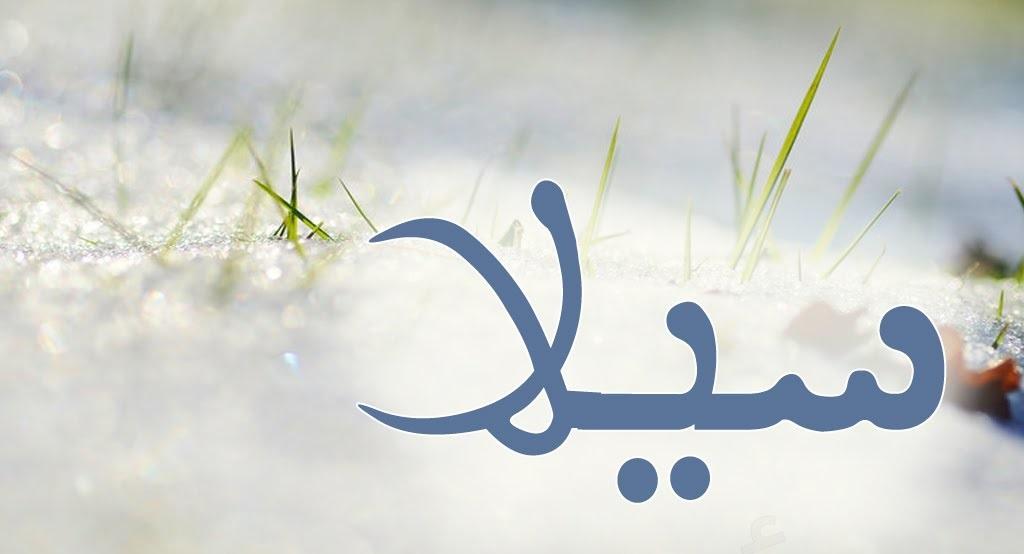 أسم سيلا وحكم التسمية بهذا الأسم فى الإسلام 2019