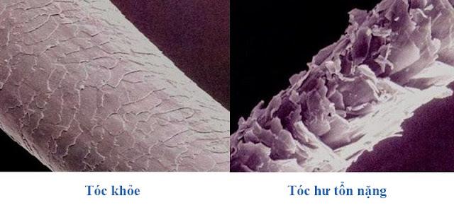 Kỹ thuật mềm hóa tóc hư tổn