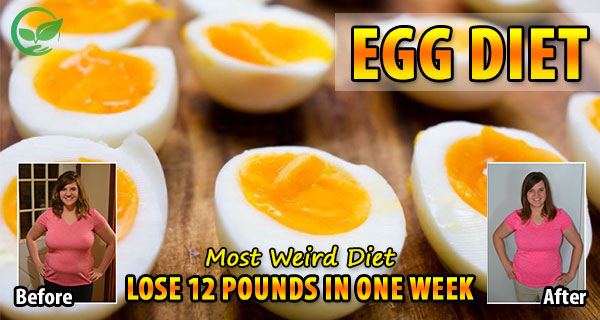 THE BOILED EGGS DIET: Lose 11 kg In 2 Weeks!